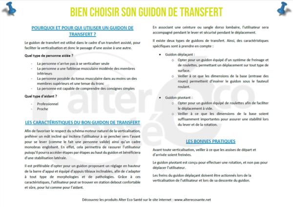 Guidon de transfert Livre Blanc